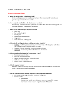 Unit 4 Essential Questions