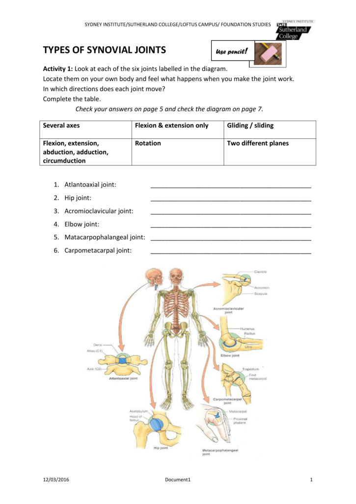 Types Of Synovial Joints Learner Support