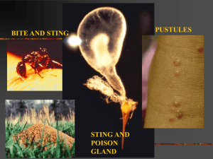 Imported Fire Ant eXtension - National Association County