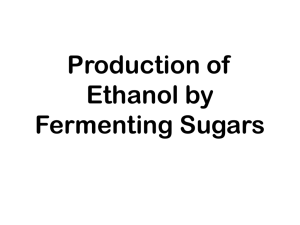 Production of Ethanol by Fermenting Sugars