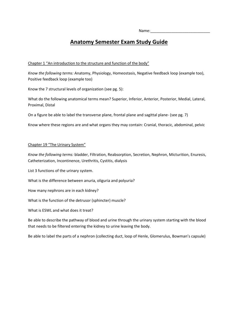 Anatomy Semester Exam Study Guide