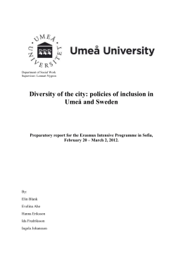 Preparatory Report - Diversity in the city: urban policies of inclusion