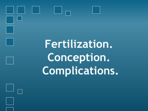 Fertilization. Conception. Complications.