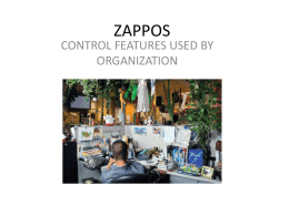 zappos - Companyproject