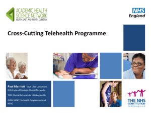 Cross-cutting telehealth programme