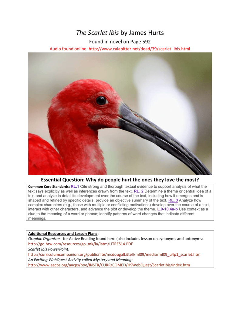 Unit 4 the scarlet ibis intro and dialectical reading buycottarizona Choice Image