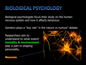 DAY 6 - Biological Psychology
