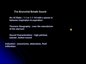 The Bronchial Breath Sound