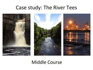 Middle Course of the River Tees