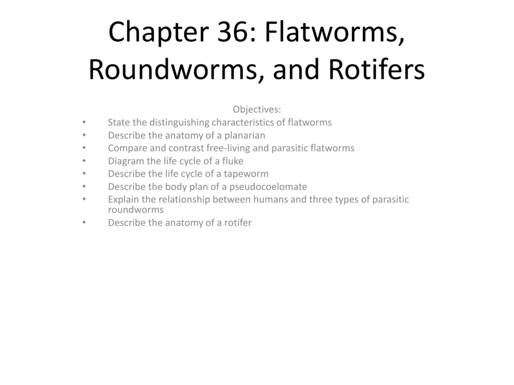 Chapter 36 Flatworms Roundworms And Rotifers