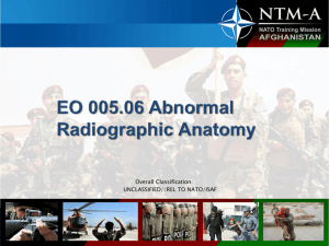 005.06_Lecture_3_Abnormal_Radiographic_Anatomy
