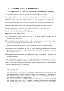 General Survey of Higher Plants