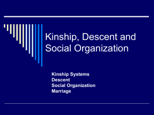 !Kung Kinship and Social Organization