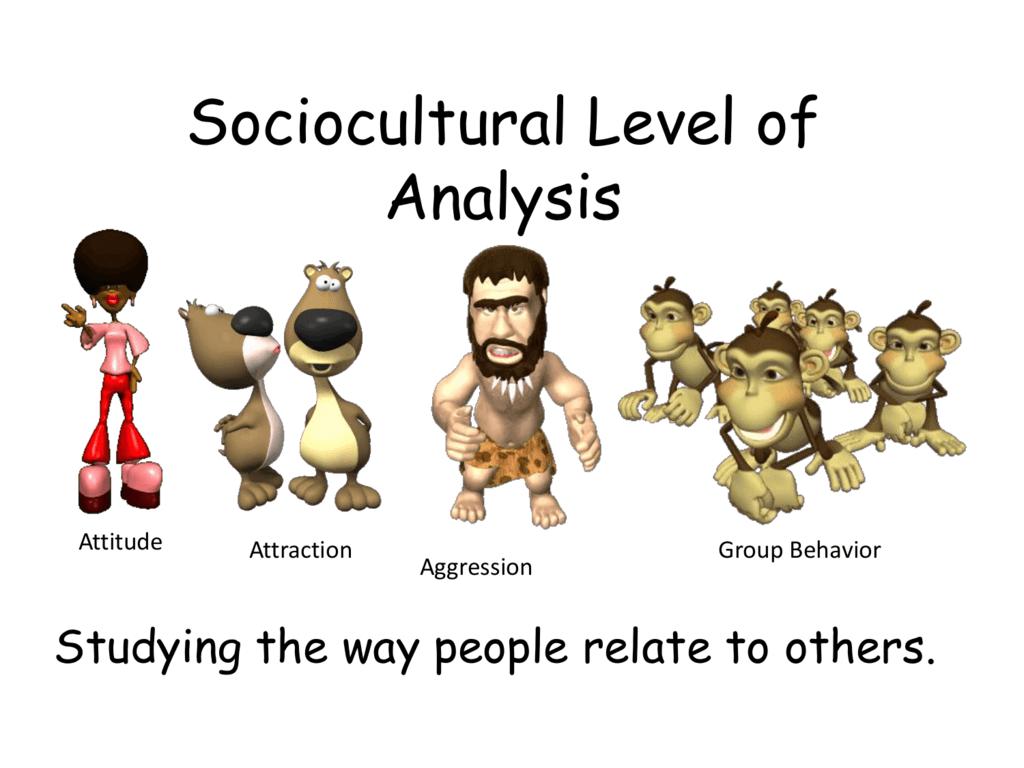 ib psychology notes