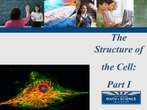 Cell Structure PPT Part 1