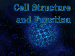 1 Cell Structure and Function
