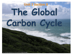 Unit 2 Section 8 The Global Carbon Cycle