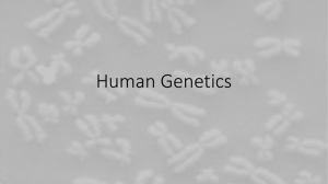 Human Genetics PPT and Notes