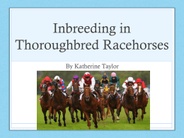Inbreeding in Thoroughbred Racehorses