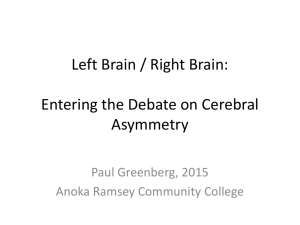 Left Brain / Right Brain: Understanding Cerebral Asymmetry