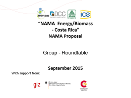 NAMA Energy Biomass