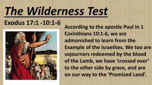 The Wilderness Test
