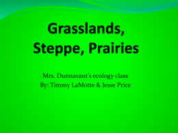 Grasslands, steppe, Prairies Draft
