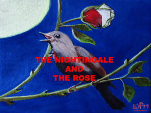 Does the nightingale help to the student?