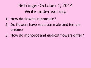 Flowers/Reproduction - Ms Kim's Biology Class