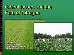 Why Nitrogen Management is important