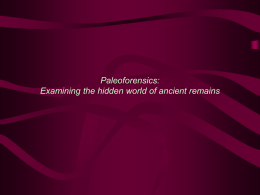 Paleoforensics: Examining the hidden world of ancient remains