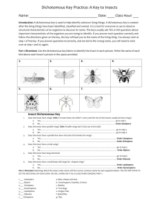 Dichotomous Key Practice: A Key to Insects Name: Date: ____ Class