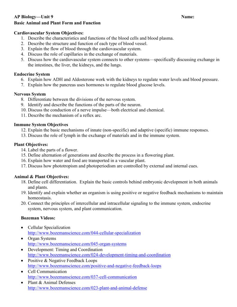 worksheet Feedback Mechanisms Worksheet schedule