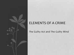 Unit 3 Criminal Law