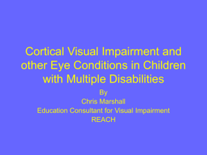 Cortical Visual Impairment and other Eye