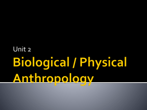 Biological / Physical Anthropology