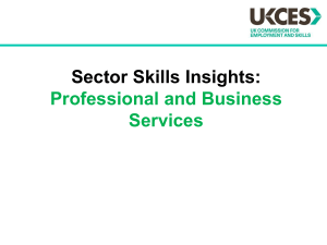 professional and business services summary slide pack