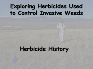 Using Herbicides to Manage Noxious Weeds