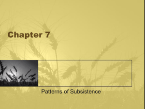 Chapter 17, Patterns of Subsistence