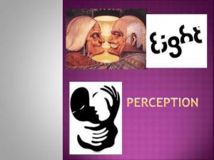 PERCEPTION powerpoint[1].