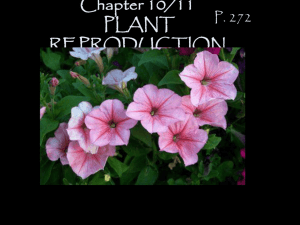 Chapter 11/12 PLANT REPRODUCTION