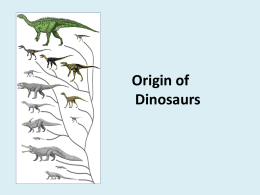 Part 3 - Dinosaurs - How diversity is studied