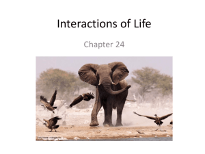 Interactions of Life - Ms. Banjavcic's Science