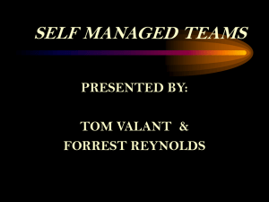 Self Directed Teams