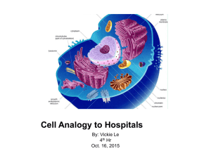 Cell Analogy to Hospitals - APBiology2015-2016