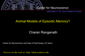 Charan Ranganath: Animal Models of Episodic Memory?