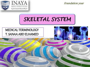 SKELETAL SYSTEM - INAYA Medical College