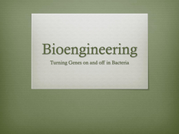 Bioengineering - Needham.K12.ma.us