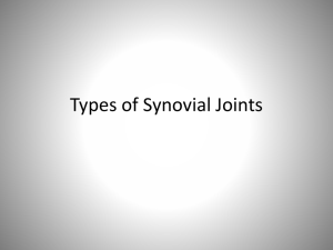 Types of Synovial Joints - White Plains Public Schools