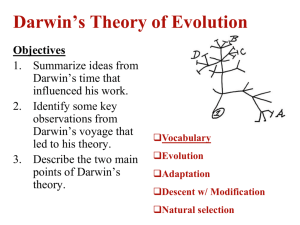 Ch. 14.1: Darwin developed a Theory of Evolution